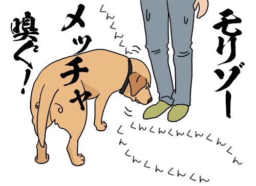 21072020_dog1.jpg