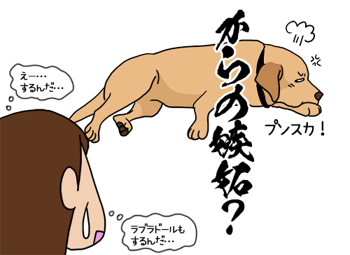 21072020_dog2.jpg
