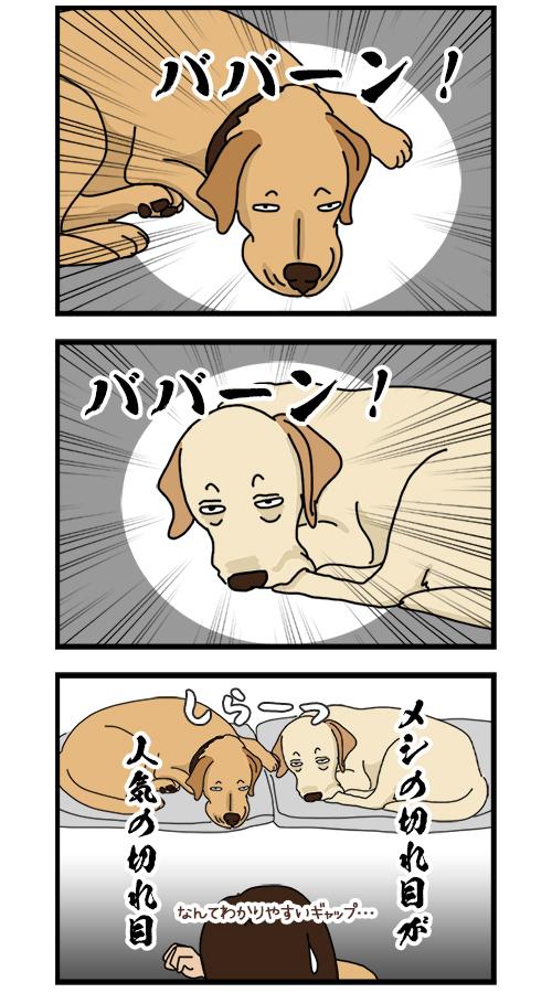 22052020_dogcomic2.jpg