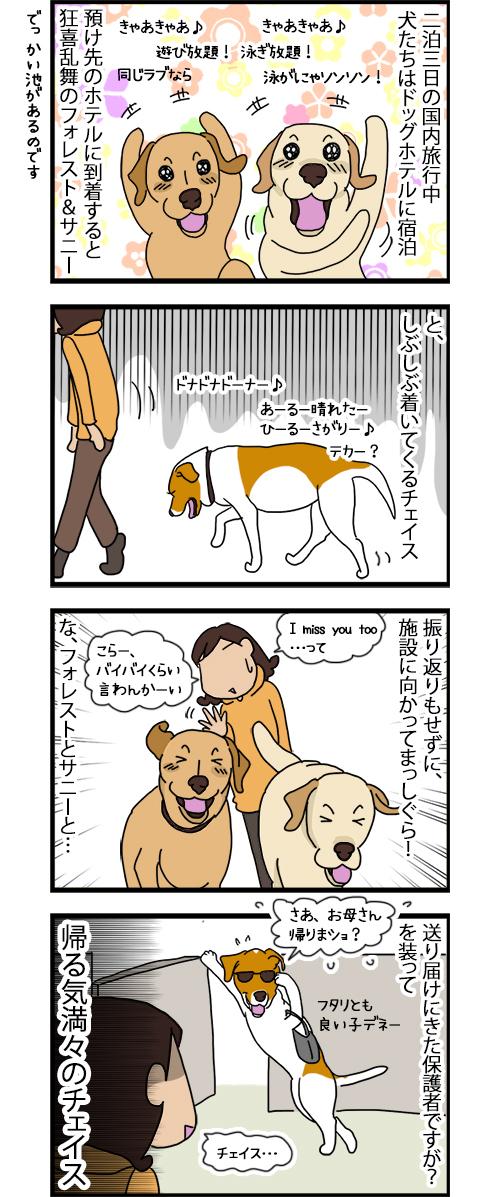 22092020_dogcomic.jpg