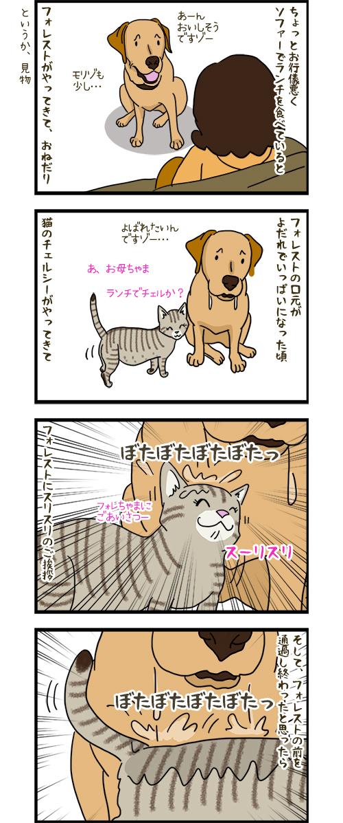 23042020_dogcomic_1.jpg