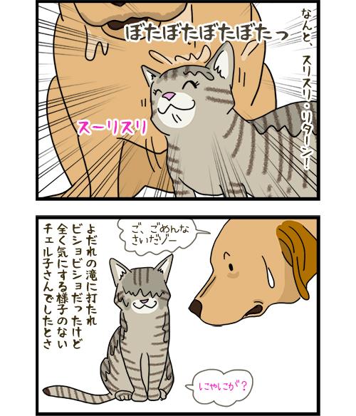 23042020_dogcomic_2.jpg