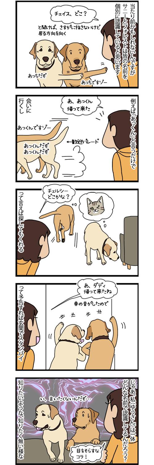 23102020_dogcomic.jpg
