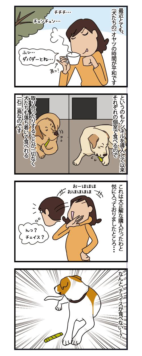 23112020_dogcomic1.jpg