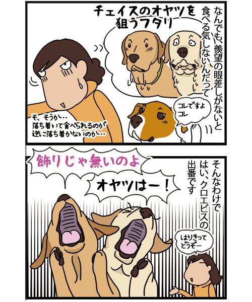 23112020_dogcomic2.jpg