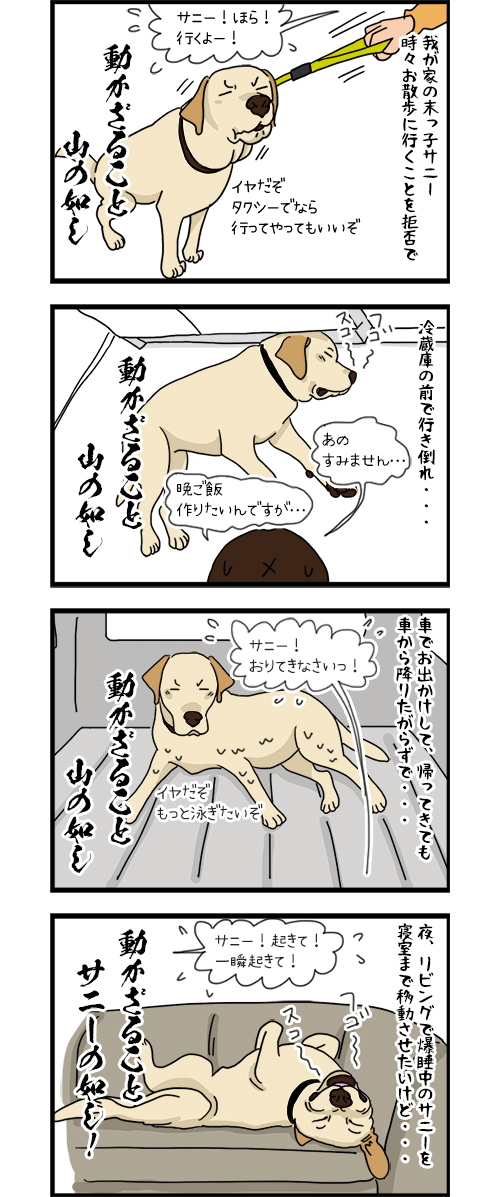 24042020_dogcomic.jpg