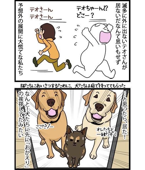 24082020_dogcomic_2.jpg