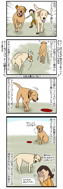 25082020_dogcomic.jpg