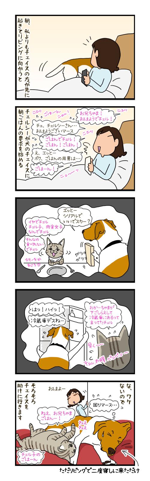 26032020_dogcomicB.jpg