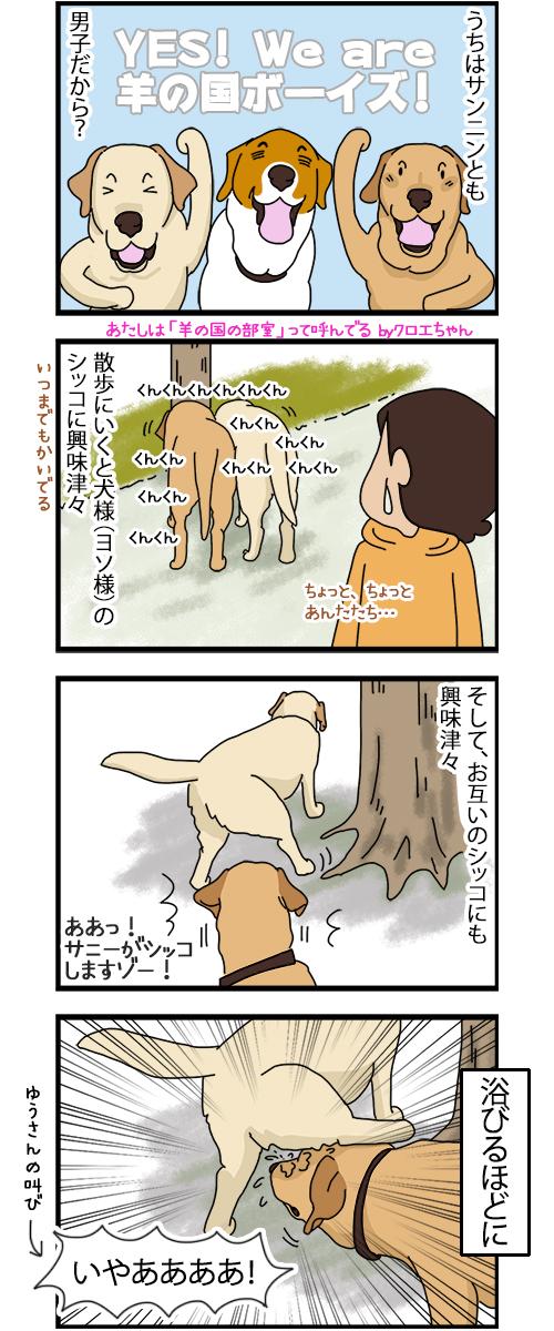 26062020_dogcomic.jpg
