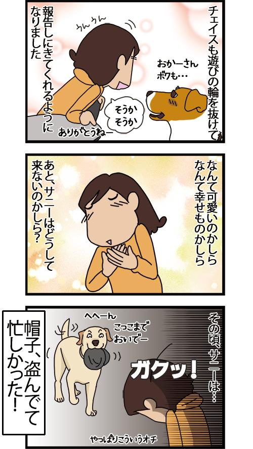 26112020_dogcomic_2.jpg