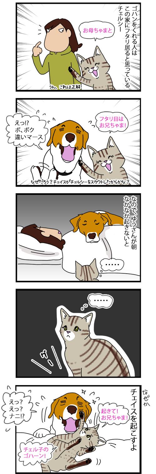 27072020_dogcomic.jpg