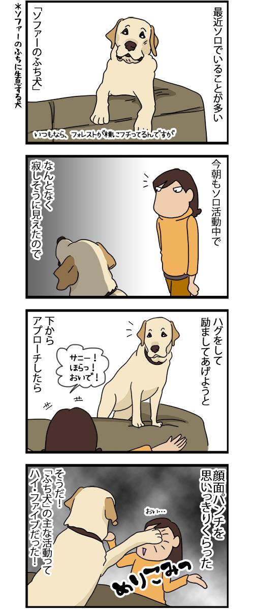 27082020_dogcomic.jpg