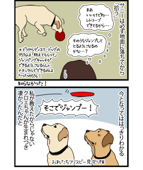 28102020_dogcomic_2.jpg