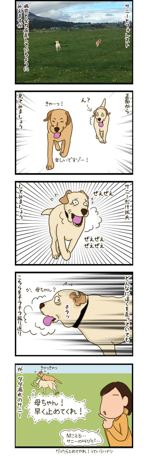 30032020_dogcomic.jpg