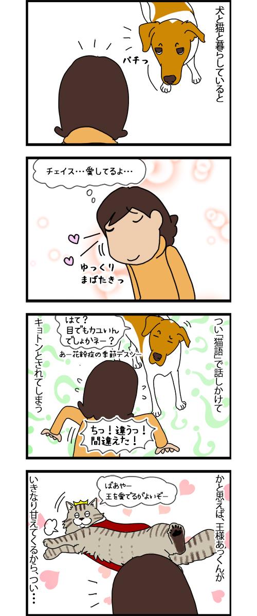 31102020_dogcomic_1.jpg