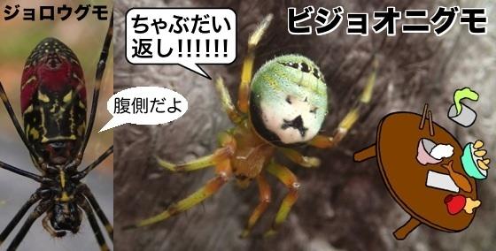 06女郎蜘蛛美女鬼蜘蛛