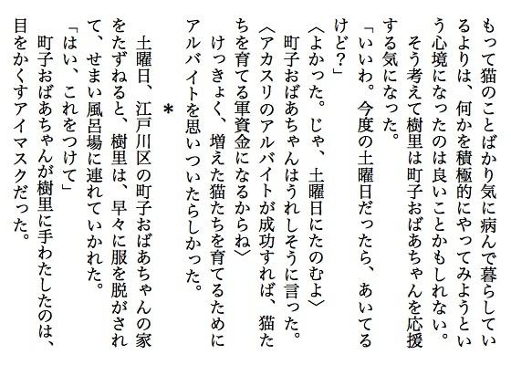 06猫婆ちゃん6