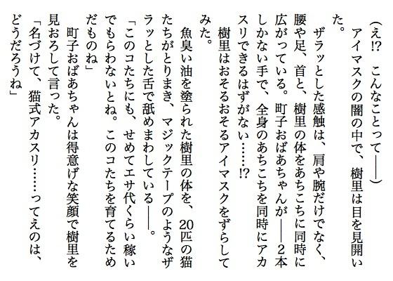 09猫婆ちゃん9