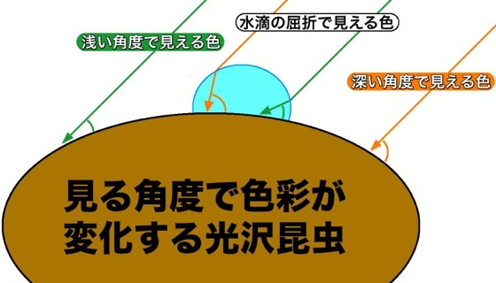 02水滴色彩変化図解
