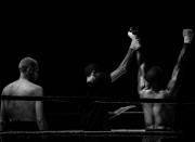 boxing-555735_960_720.jpg