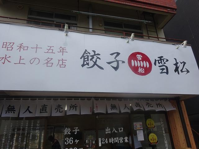 雪松 (1)