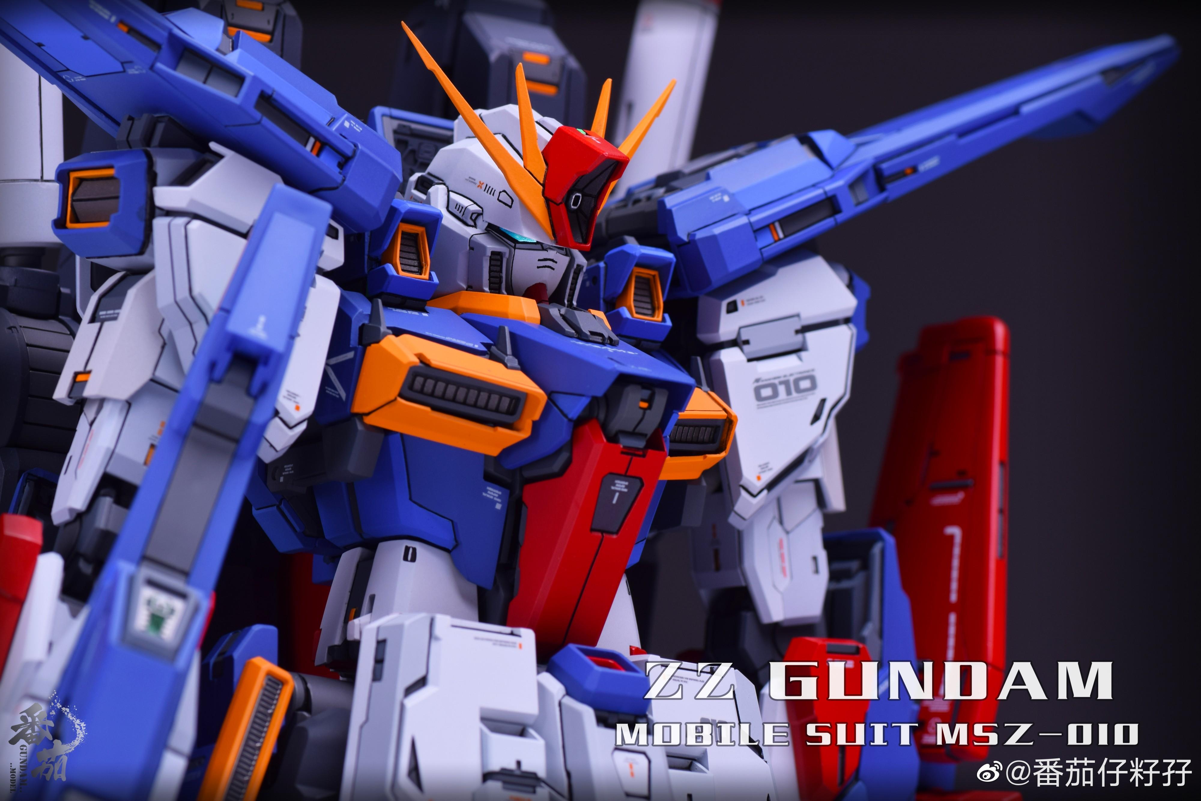 G480_mg_zz_gk_Fortune_Meows_Studio_001.jpg