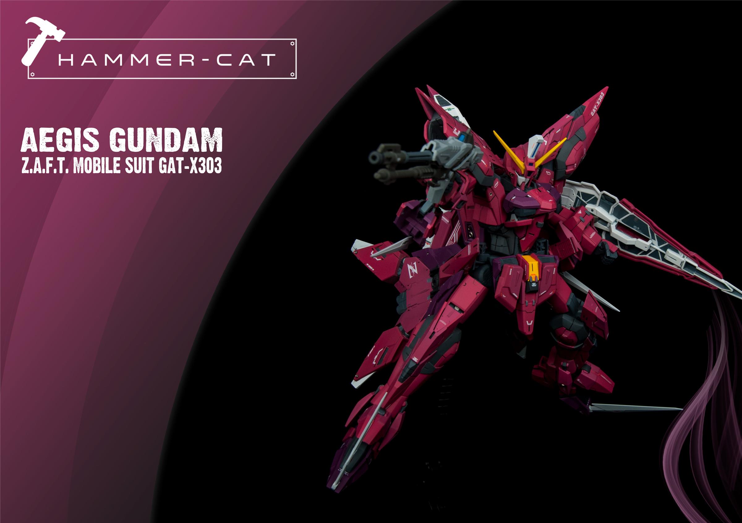 G579_GAT_X303_Aegis_Gundam_006.jpg