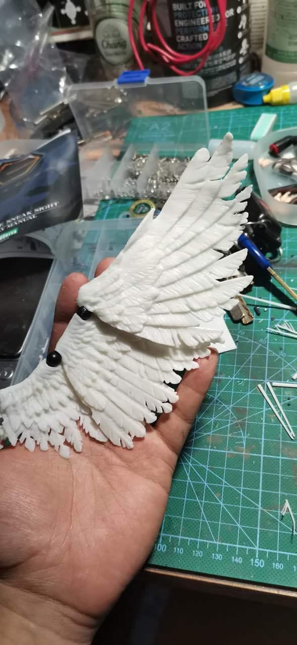G645_wing_5.jpg