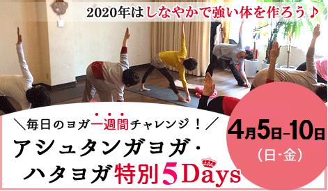 アシュタンガヨガ・ハタヨガ&瞑想 5days 特別クラス アナオヨウコ 京都ヨガ・IYC京都