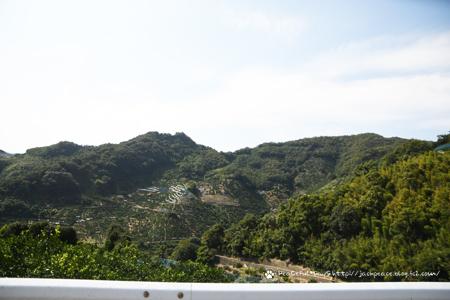 201012_arida.jpg
