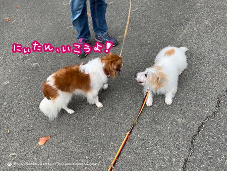 201120_wakayama8.jpg