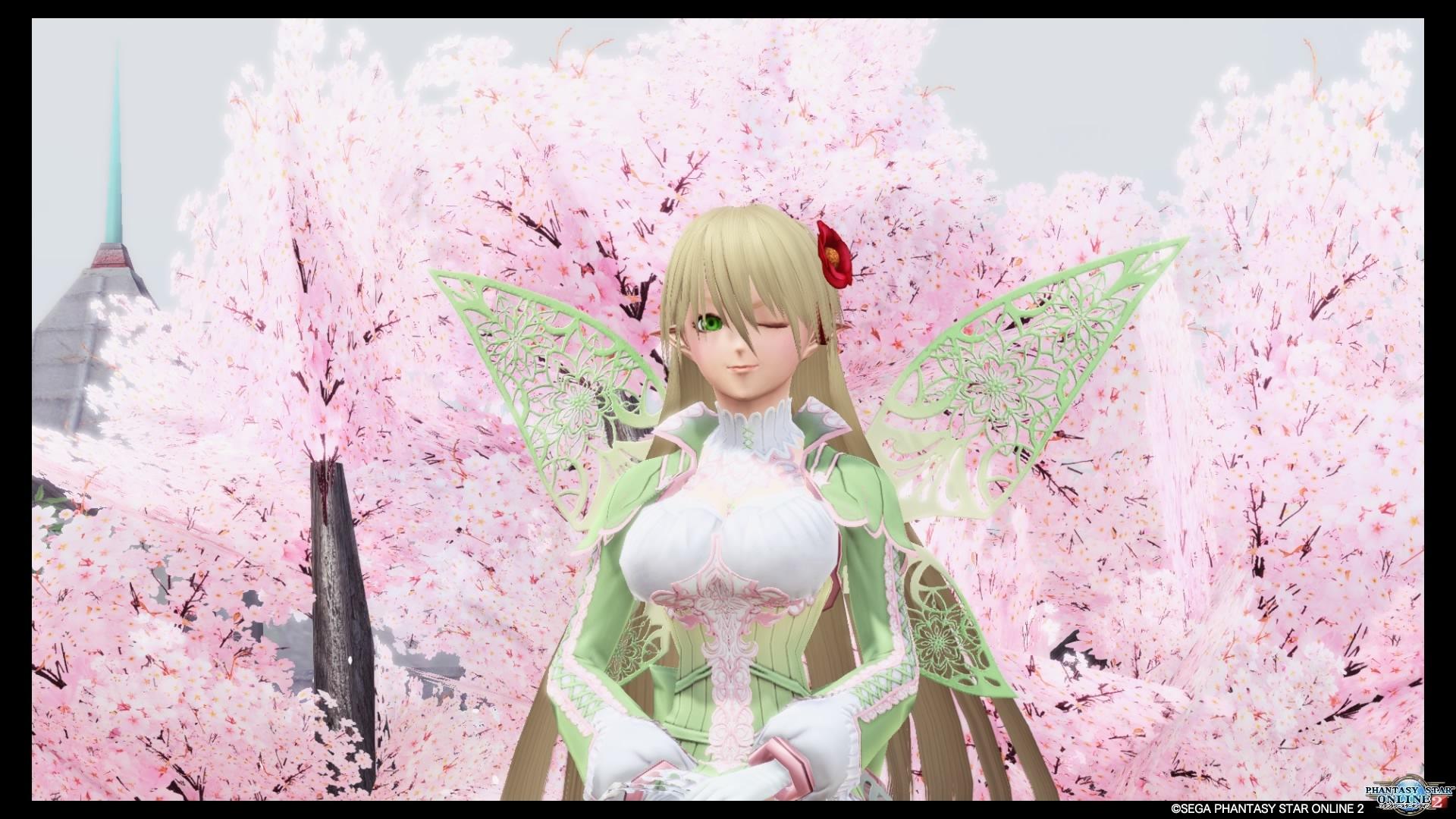 フェイヒュー桜カフェ_20200330004530