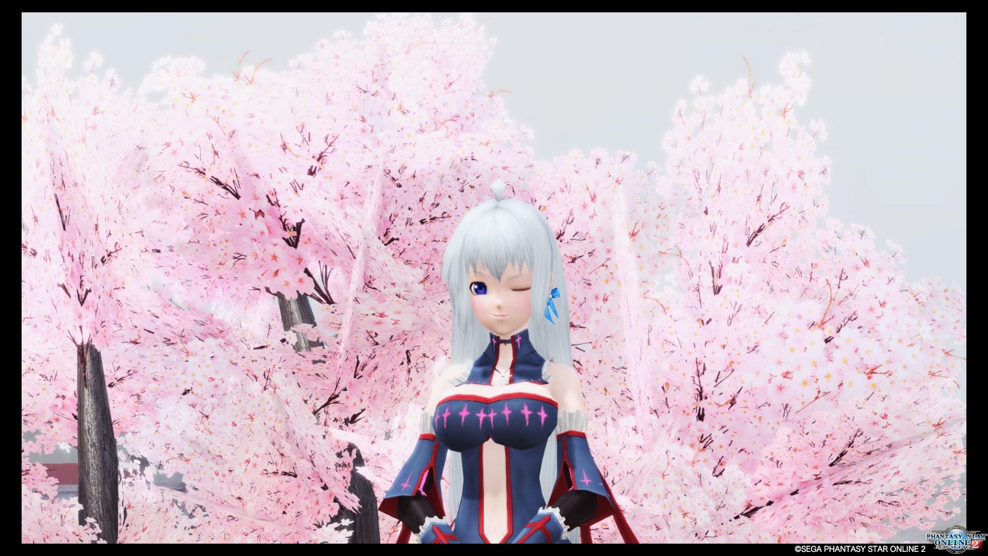 エリータ桜カフェ_20200331182929