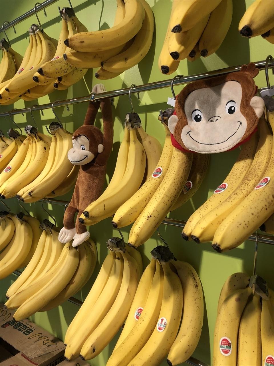めっちゃ バナナ 佐野