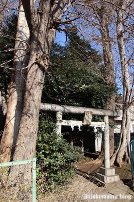 猿田彦神社  杉並区本天沼1