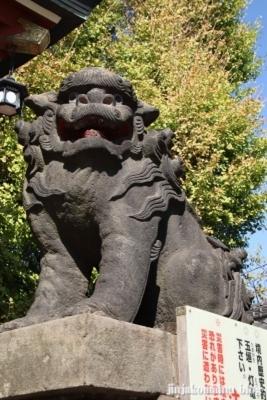 平井諏訪神社 江戸川区平井1