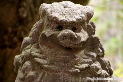 新小岩天祖神社 葛飾区東新小岩8