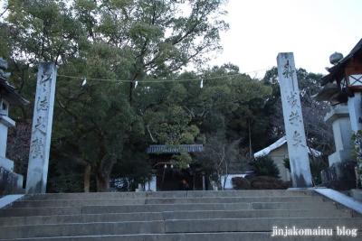 東雲神社(松山市丸之内)3