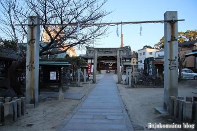 井手神社(松山市北立花町)2