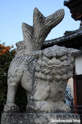 井手神社(松山市北立花町)25