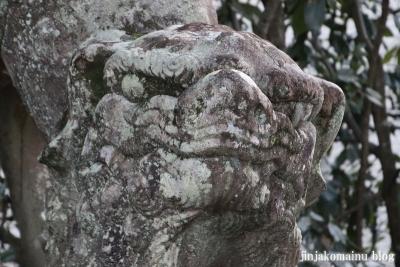 潮江江天満宮(高知市天神町)20