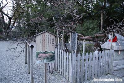 潮江江天満宮(高知市天神町)94