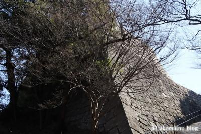 丸亀城(丸亀市一番丁)18