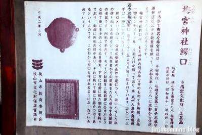 梅宮神社  狭山市上奥富4