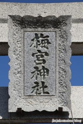 梅宮神社  狭山市上奥富8