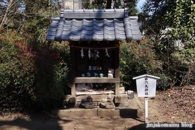 氷川神社  狭山市青柳10