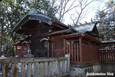 笹井白髭神社  狭山市笹井12