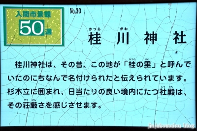 桂川神社 入間市大字木蓮寺13