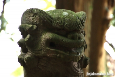 香取鷲神社 古河市駒込18